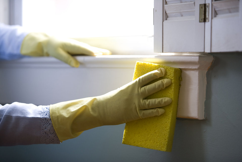 Mold or Mildew | Dianne Perry & Company Blog