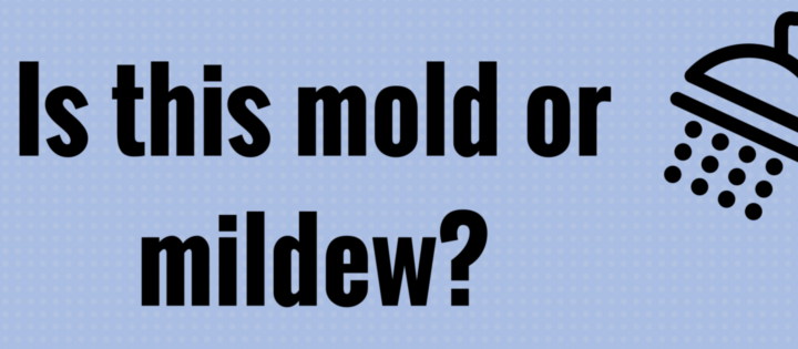 Is this mold or mildew- (1)